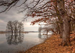 Oderrivier in Duitsland in Herfststemming. Het is de grens tussen Duitsland en Polen