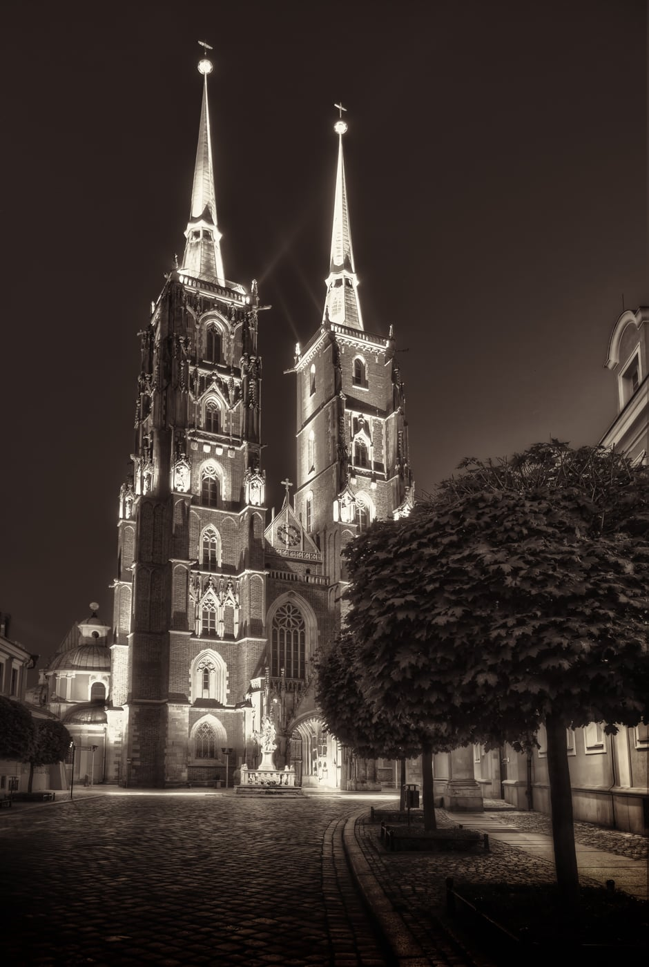 Kathedraal in Wroclaw in de nacht