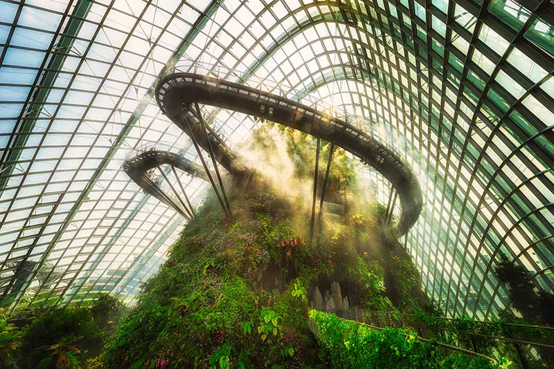 Cloud forest in Singapore with mist surrounding vegetated mountain