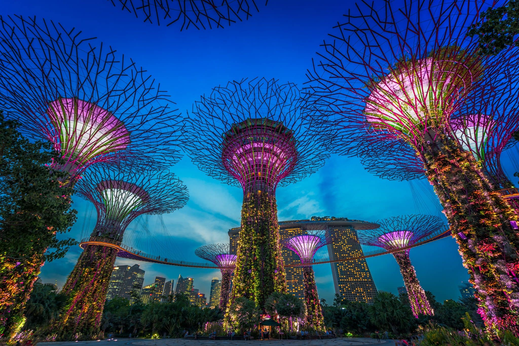 Photo of a colorful attraction that can be seen at the Singapore Gardens by the Bay.