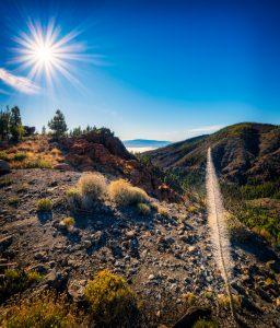 Teneriffa Bugloss am Teide Berg mit Blick auf La Gomera an einem sonnigen Tag; Spanien.