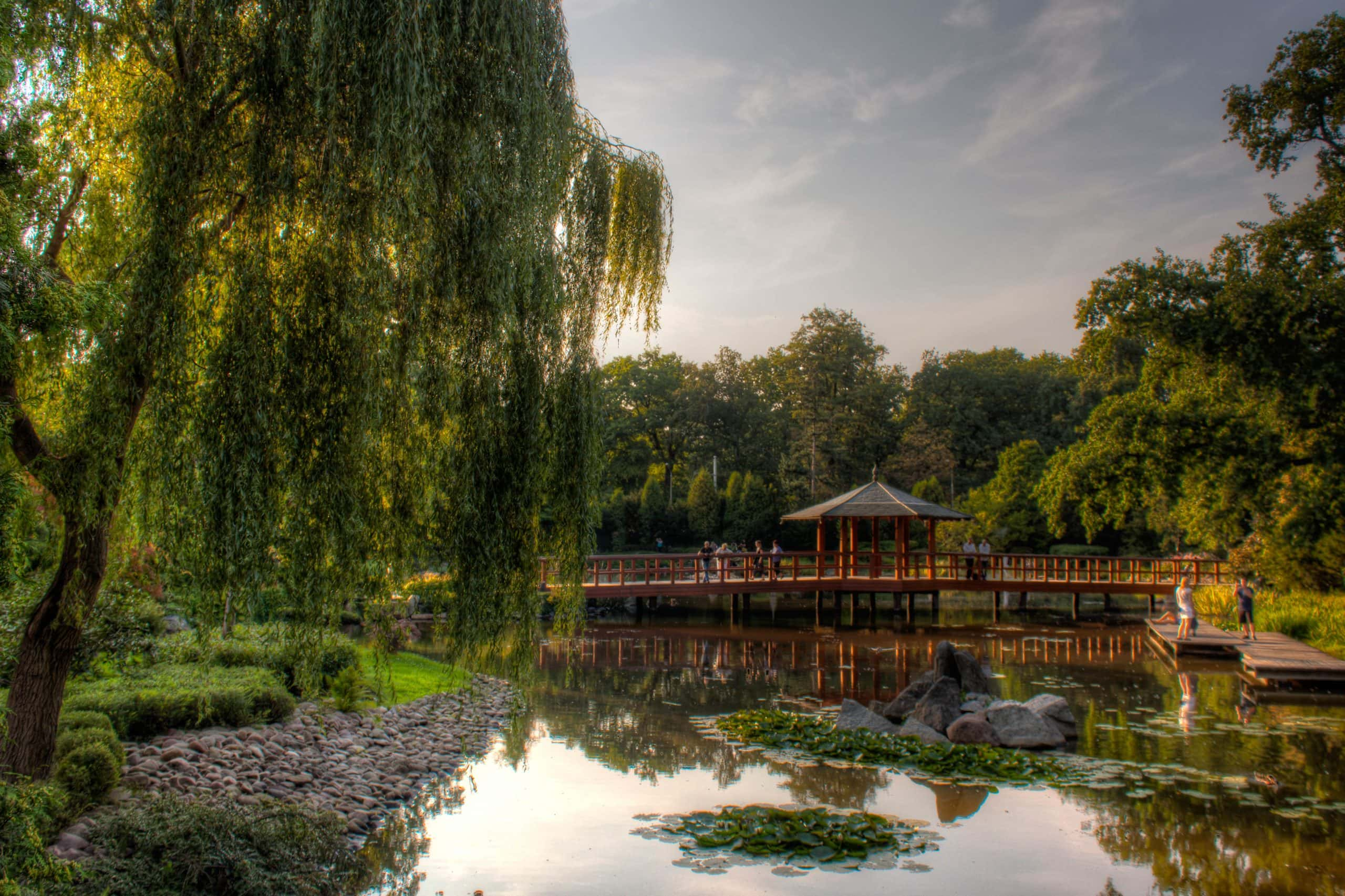 Bridge in the Japanese Garden Wroclaw with river reflection. Poland