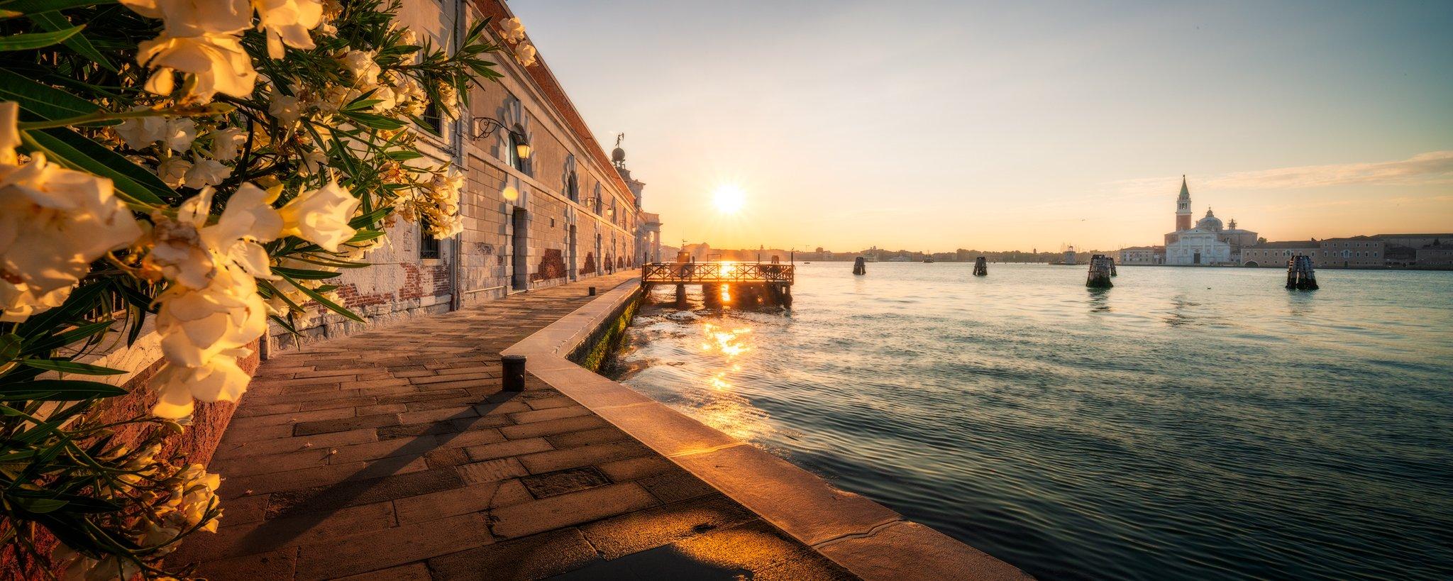 Punta della Dogana overlooking San Marco in Venice, Italy